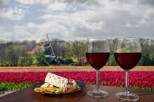 Two Glasses Of Red Wine With Cheese And Meat Assortment On View Of Tulips Field And Windmill In Netherlands. Glass Of Red Wine With Different Snacks - Plate With Ham, Sliced, Blue Cheese.