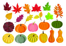 Autumn Vector Set Of Colorful Pumpkins And Leaves In A Flat Style. Pumpkins And Foliage Are Red, Yellow, Green And Orange Isolated On A White Background. Perfect For Autumn Cards, Halloween