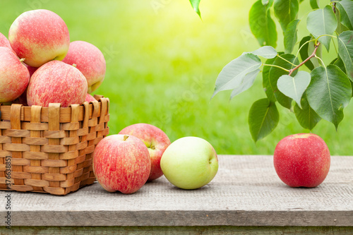Ripe garden apple fruits in basket