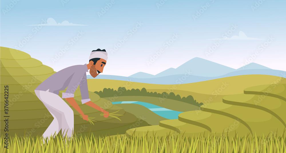 Fototapeta Indian agriculture landscape. Farmer working in indian rice fields rural worker vector cartoon background. Illustration indian agricultural, plantation landscape