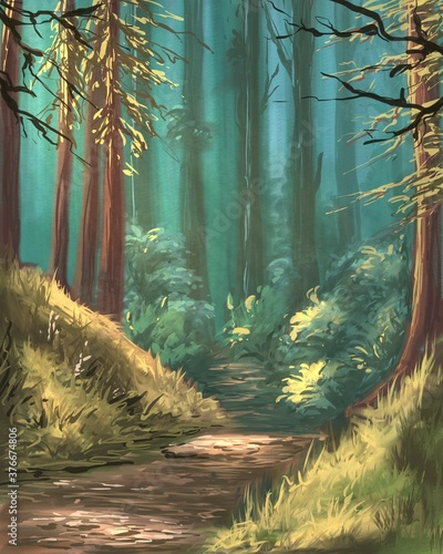 Okleiny na drzwi - Lasy - Drzewa  beautiful-forest-in-the-morning