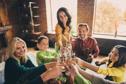 Fototapeta Portrait of nice attractive cheerful glad positive big full family gathering meeting celebratory occasion clinking glasses festal evening party at modern loft brick industrial interior house indoors obraz
