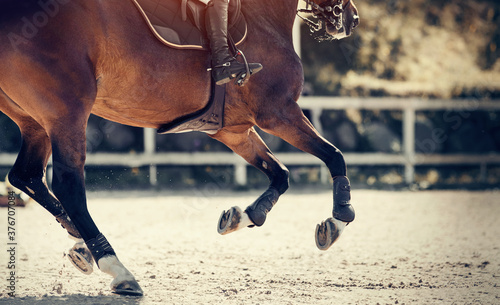 Papel de parede Equestrian sport. Legs of a galloping horse close-up.