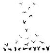 Silhouette set of flying seagulls birds on white background. Inspirational body or flesh ink tattoo design of sea birds. Vector.