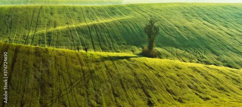Tourist enjoys the rural landscape. Hills and farmland Canvas-taulu