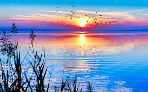 Valokuvatapetti colorido amanecer en el mar mediterrano
