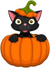 Vector Illustration Of A Happy Cartoon Black Cat Peeking Out From Inside A Pumpkin.
