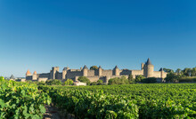 Vineyards And Medieval Fortifi...