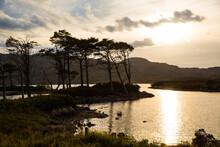 Loch Assynt At Sunrise, Lochinver, Scotland, UK