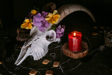 White Goat Scull With Horns, Flowers, Open Old Book, Candles On Witch Table.