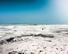 Bassa Marea Zanzibar