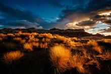 View Of Desert Landscape During Sunrise