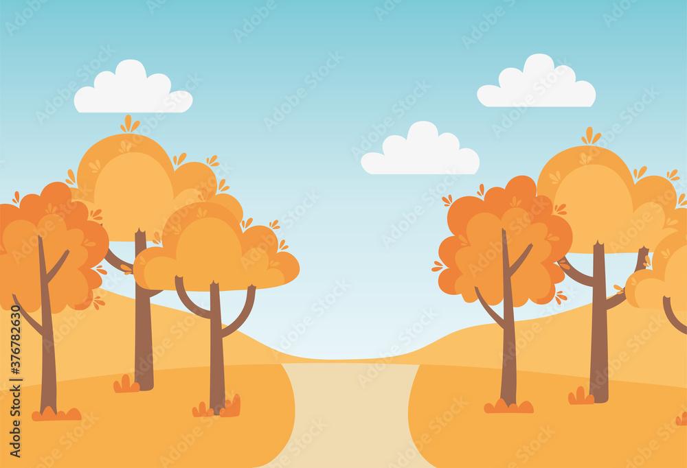 Fototapeta landscape in autumn nature scene, park trees path grass countryside