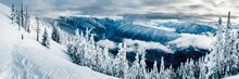Snowcapped Mountains With Trees In Hurricane Ridge In Olympic National Park