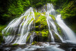 View of waterfall in rainforest