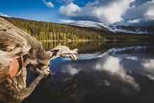 View Of Spirit Lake And Sheep ...