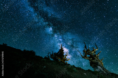Milky Way above White Mountains with ancient bristlecones in California