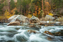 Merced River Flowing Through Forest In Yosemite National Park