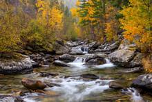 Kootenai Creek Flowing Through Forest In Autumn