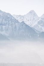 Flock Of Birds Flying Mid Air Against Snowcapped Mountain