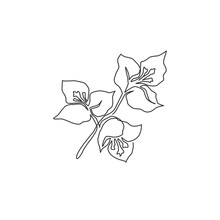One Single Line Drawing Of Beauty Fresh Bougainville For Wall Home Decor Poster. Printable Decorative Flower Concept For Greeting Card Ornament. Modern Continuous Line Draw Design Vector Illustration