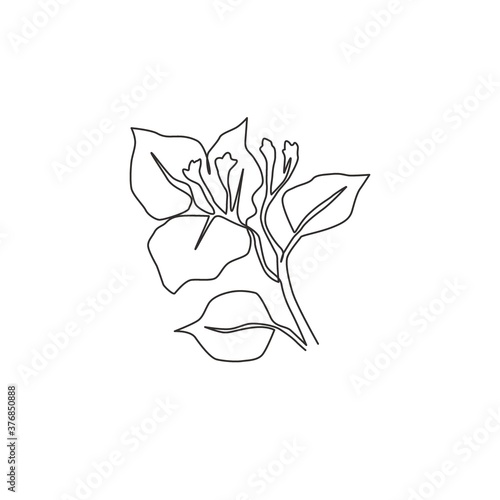 Cuadros en Lienzo One continuous line drawing of beauty fresh bougainville for home wall decor art poster