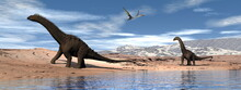 Alamosaurus Dinosaurs Walking Peacefully Next To A Lake And Under Quetzalcoatlus Flying - 3D Render