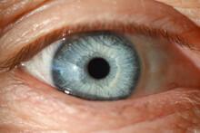 Blue Human Eye With Black Pupi...