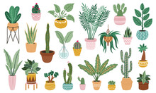 Plant In Pots. Home Potted Plants, Flower House Plants, Ficus, Cacti And Succulents, Indoor Decorative Plants Isolated Vector Illustration Set Isolated On White. Green Leaves And Prickly Cactus