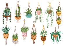 Plant In Hanging Pots. Houseplant Hang On Rope, Decorative Indoor Plants, Macrame Flower Pots, Home Potted Plants Vector Illustration Icons Set. Handmade Hangers For Flower Decoration