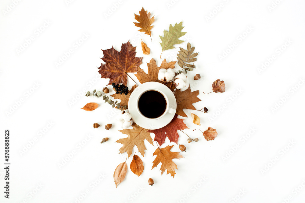 Fototapeta Cup of coffee with milk, cotton buds, acorns, dry leaves on white background. Flat lay, top view.