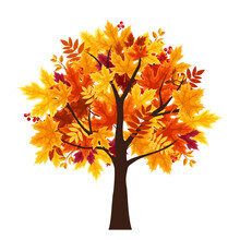 Vector Abstract Autumn Tree Is...