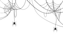 Black Spider And Spider Web. Scary Spiderweb Of Halloween Symbol. Isolated On White Background. Vector Illustration