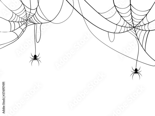 Black spider and spider web Wallpaper Mural