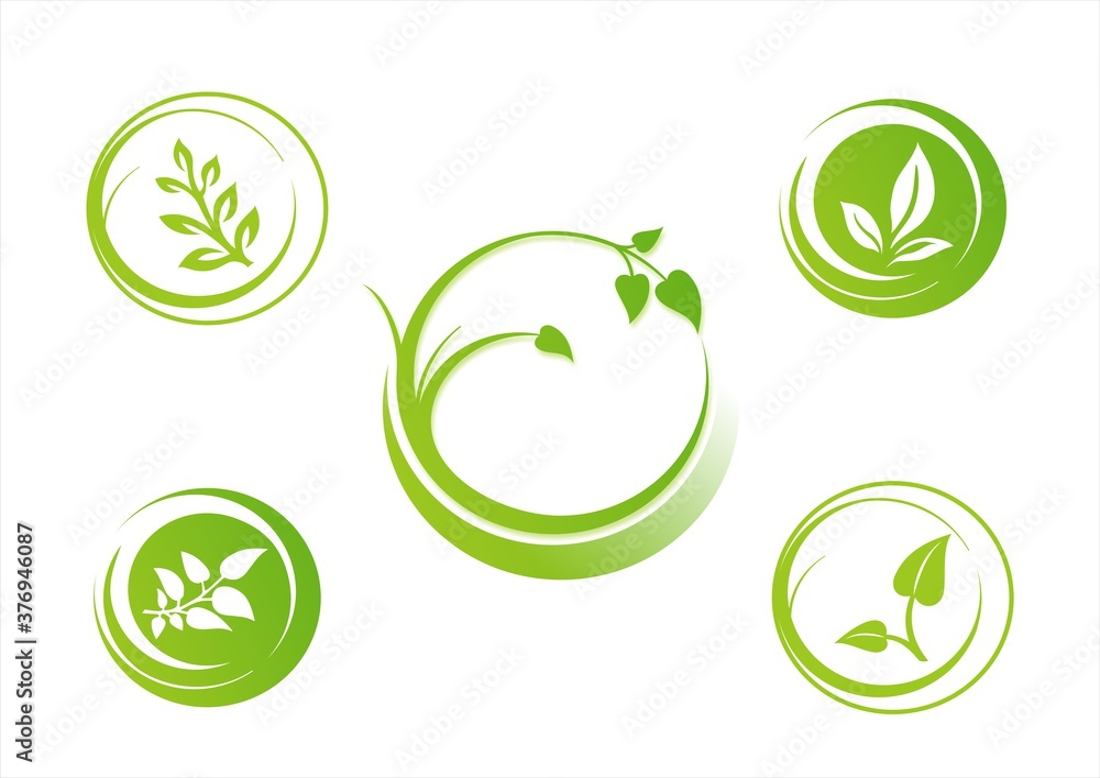 Fototapeta leaves, plant, icons , nature, Eco friendly business logo