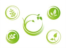 Leaves, Plant, Icons , Nature, Eco Friendly Business Logo