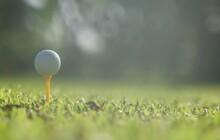 Golf Ball On Green Grass,Golf ...