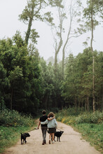 Rear View Of Couple Walking Dogs On A Leash Down A Path In The Forest