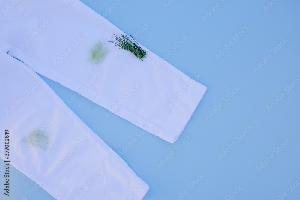 Fototapeta dirty grass stain on white pants.Isolated on blue background.daily life dirty stain for wash and clean concept