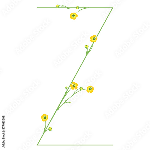 Capital letter Z with buttercup flowers Canvas Print
