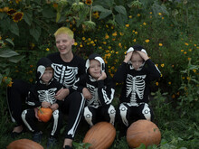 Friendly Family In Carnival Costumes Of Skeletons Sit Among The Thickets Of Sunflower. Halloween Eve. Mom And Three Boys With Pumpkins