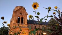 Sunflowers And A Historical Bu...
