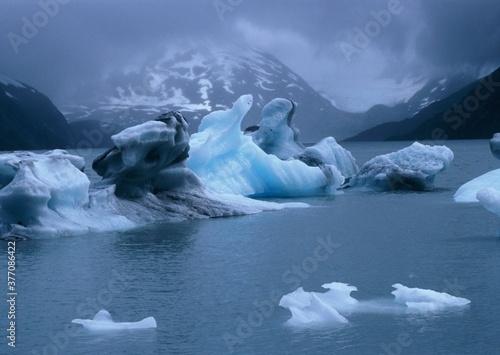 iceberg in polar regions Canvas