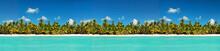 Coastline With Coconut Palm Tree Jungle On Caribbean Beach,  Island Saona. Dominican Republic