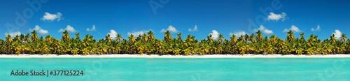 Fotografiet Coastline with coconut palm tree jungle on caribbean beach,  Island Saona