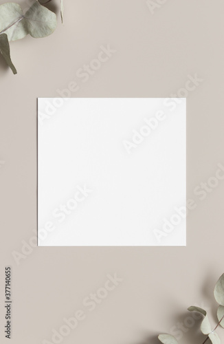 Square invitation card mockup with eucalyptus branches, 5x5 ratio.