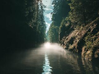 Edmundsklamm Schlucht - Böhmische Schweiz - bei Hřensko im Wald - Fluss