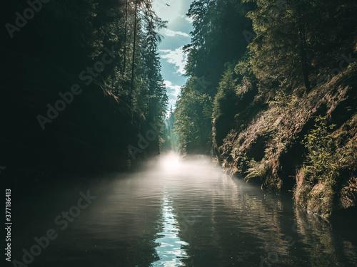 Edmundsklamm Schlucht - Böhmische Schweiz - bei Hřensko im Wald - Fluss Fototapet