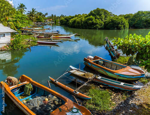 Photo Fishing boats moored amongst the tropical vegetation of the banks of the lagoon