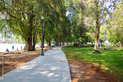 path in the park with people on the banks of the lake and lush green trees on th Fotobehang